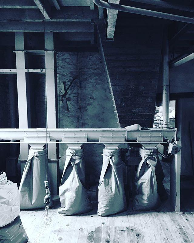 Toujours avec nos producteurs ! Ici, la mise en sacs de la farine bio du Moulin de Brimeux (62)Elle nous servira tous les jours pour vous faire rêver avec nos buns homemade. #producteur #madeinfrance #homemade #france #burger #burgerfermier #faitmaison #burgerfermierdesenfantsrouges #lemarais #paris3 #lemaraisparis #bestburger #yummy #bestburgerintown #foodporn #foodstagram #organic #bio #buns À ce midi les amis au @leburgerdesenfantsrouges